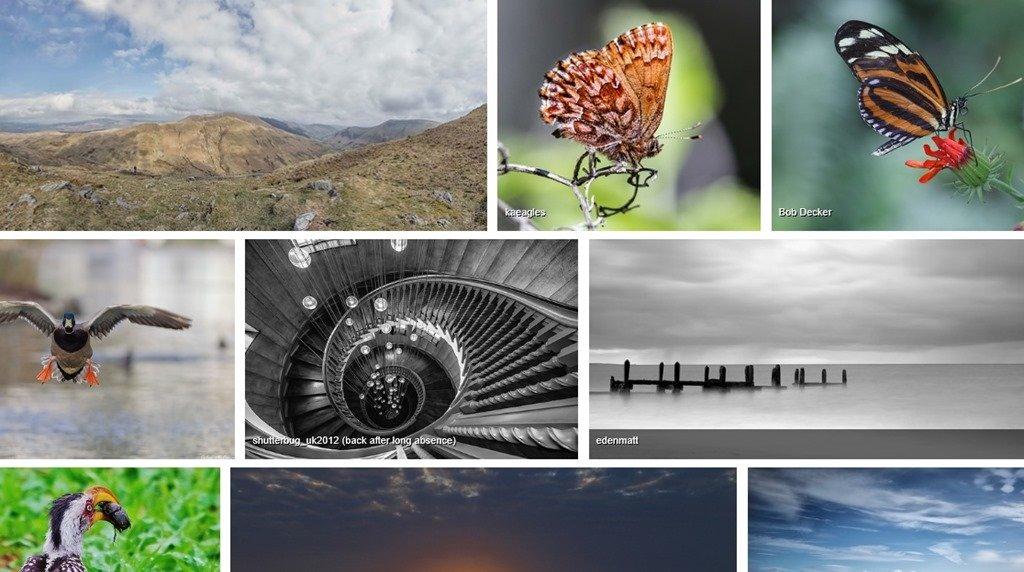 Интернет-сервисы для фотографов
