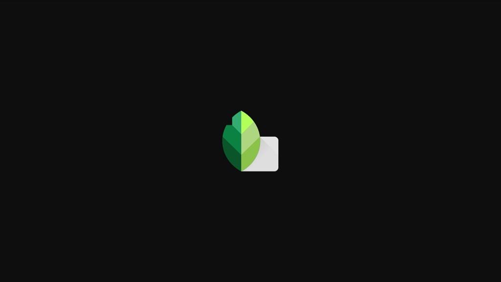 Обзор приложения Snapseed